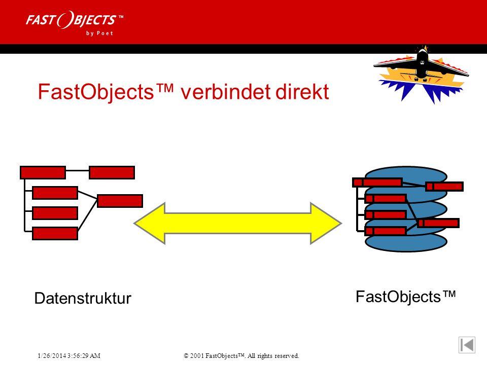 FastObjects™ verbindet direkt