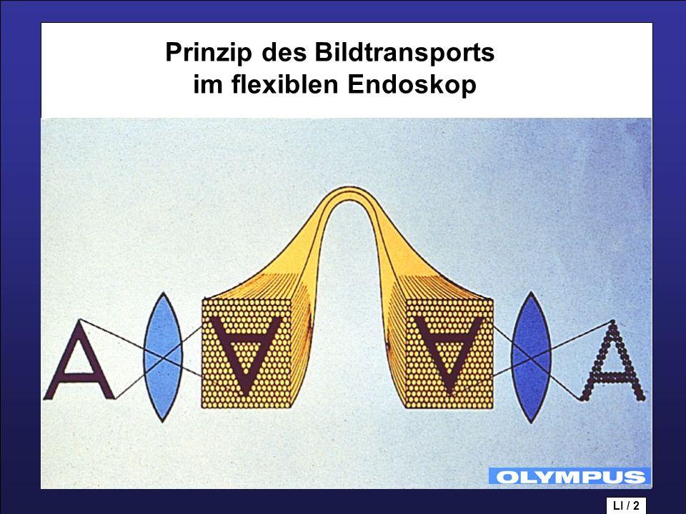 Prinzip des Bildtransports