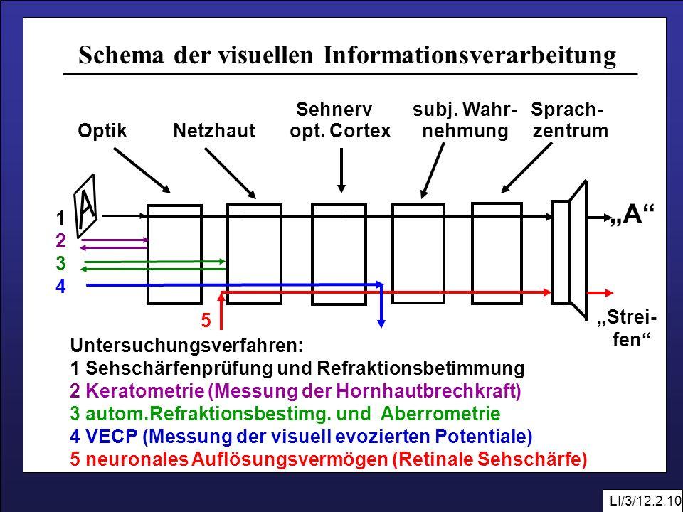 Schema der visuellen Informationsverarbeitung