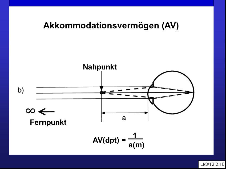 Akkommodationsvermögen (AV)