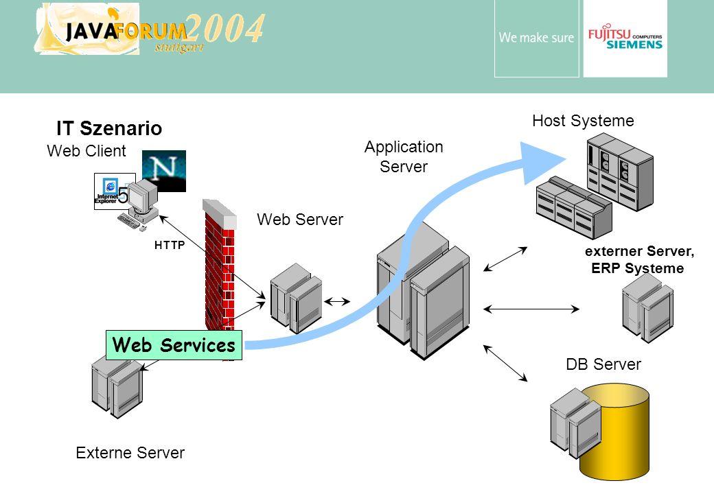 externer Server, ERP Systeme