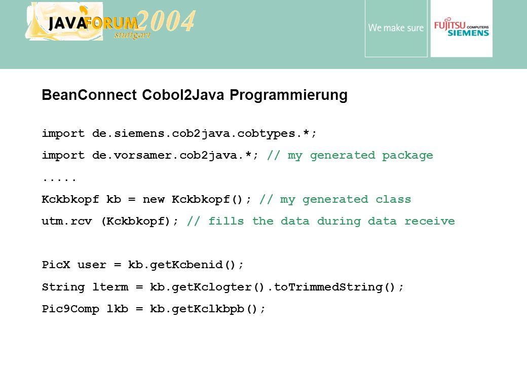 BeanConnect Cobol2Java Programmierung