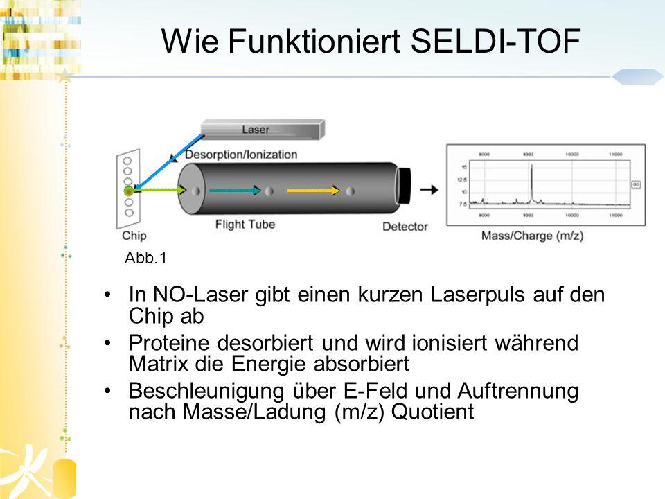 Wie Funktioniert SELDI-TOF