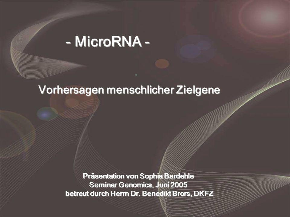 - MicroRNA - Vorhersagen menschlicher Zielgene