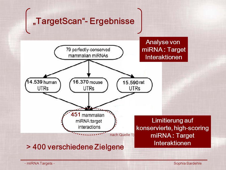 """""""TargetScan - Ergebnisse"""