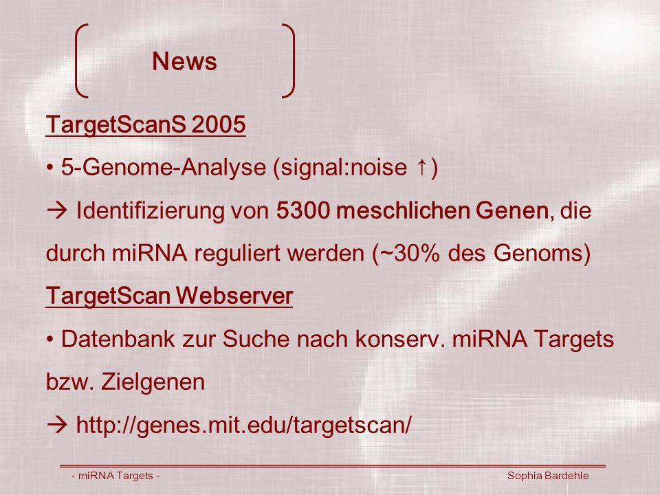 News TargetScanS 2005 5-Genome-Analyse (signal:noise ↑)