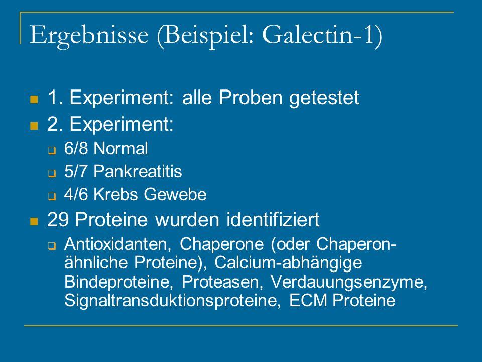 Ergebnisse (Beispiel: Galectin-1)