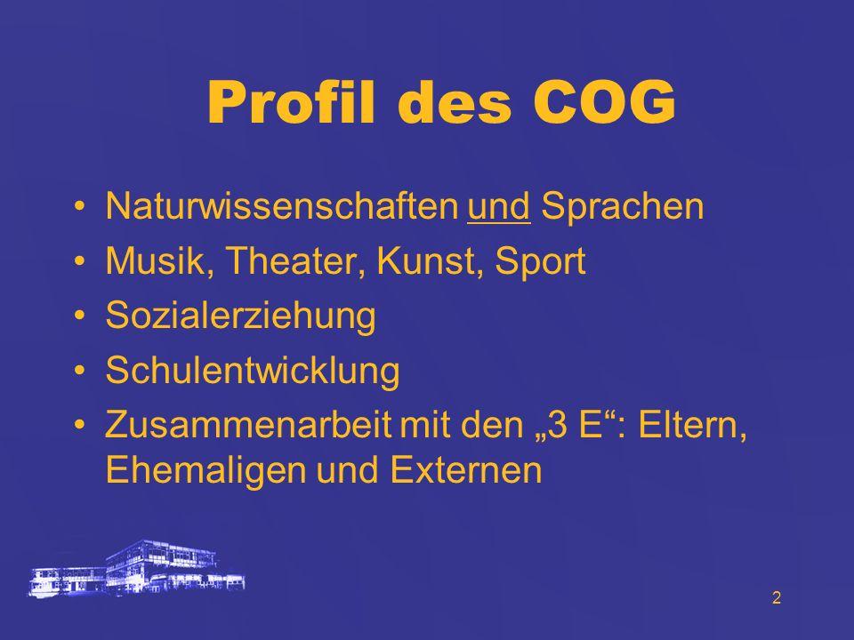 Profil des COG Naturwissenschaften und Sprachen