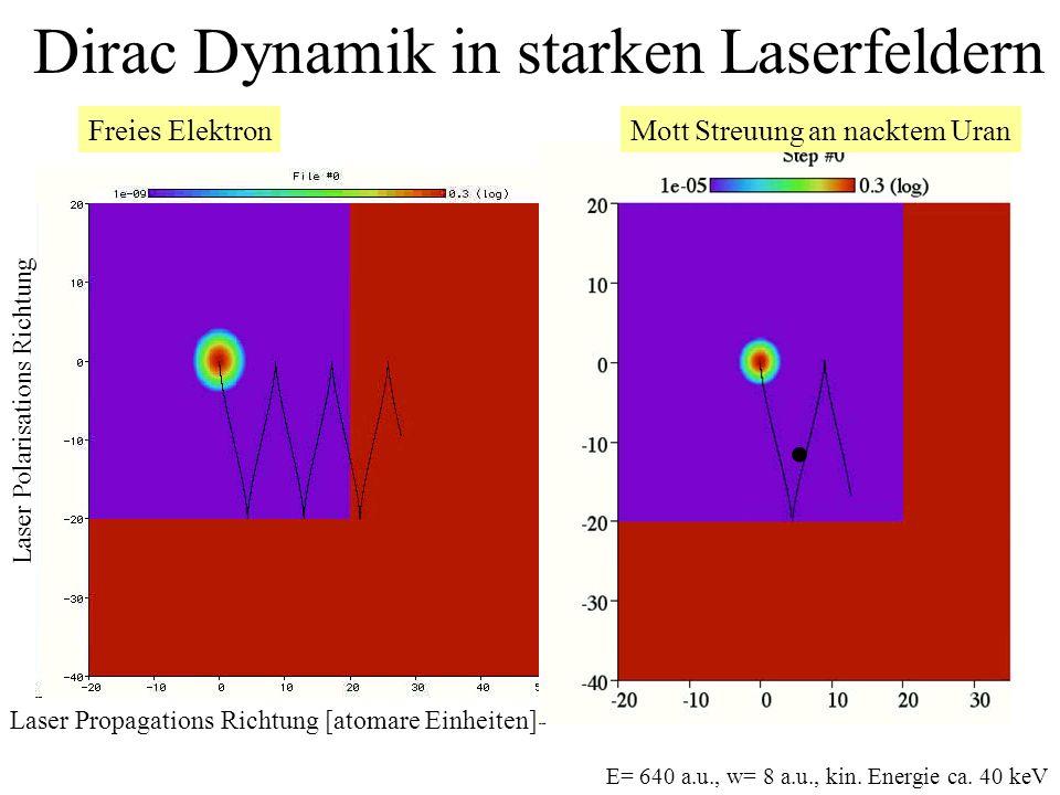 Dirac Dynamik in starken Laserfeldern
