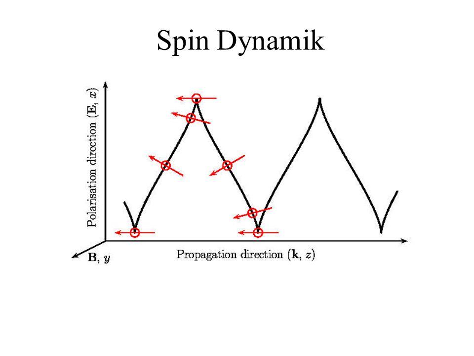 Spin Dynamik