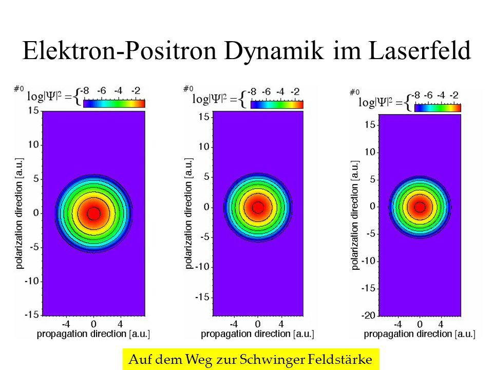 Elektron-Positron Dynamik im Laserfeld