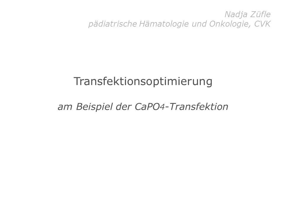 Transfektionsoptimierung