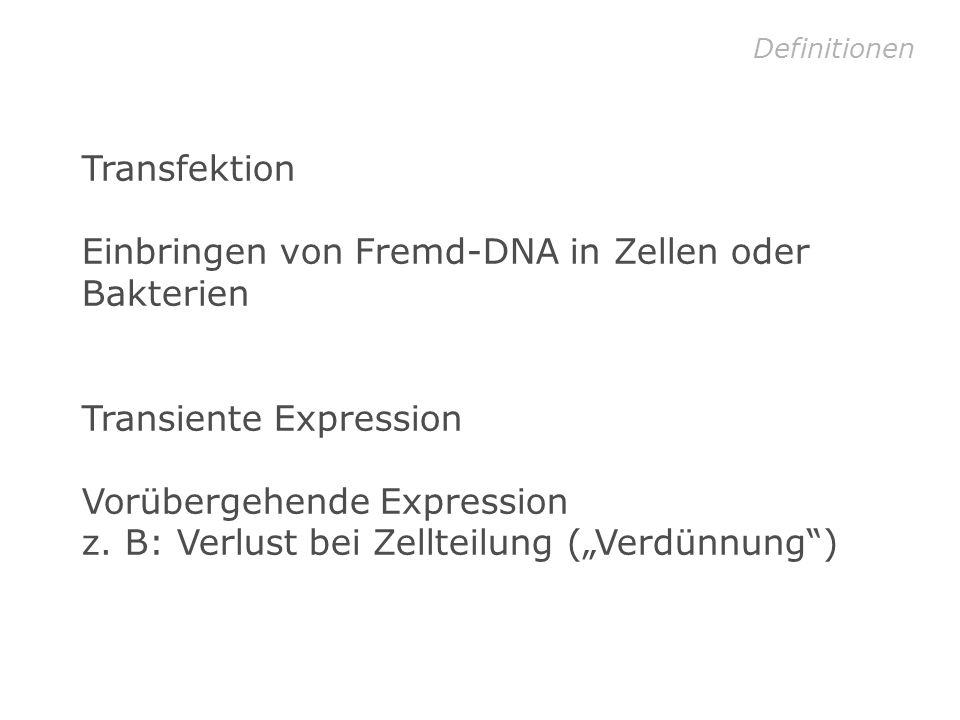 Einbringen von Fremd-DNA in Zellen oder Bakterien