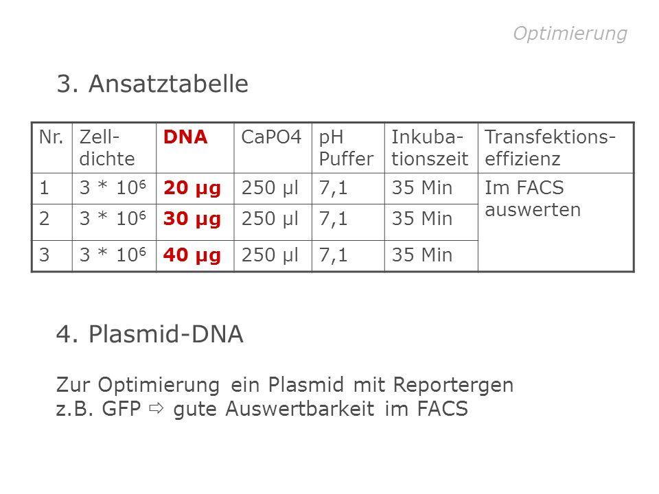 3. Ansatztabelle 4. Plasmid-DNA