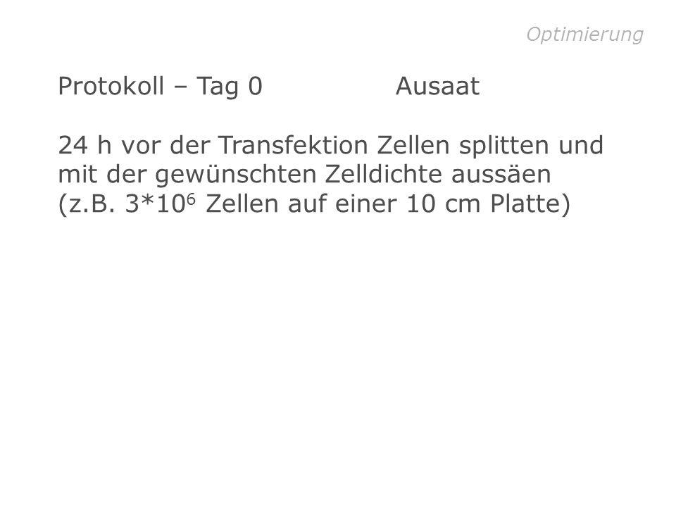 Optimierung Protokoll – Tag 0 Ausaat.