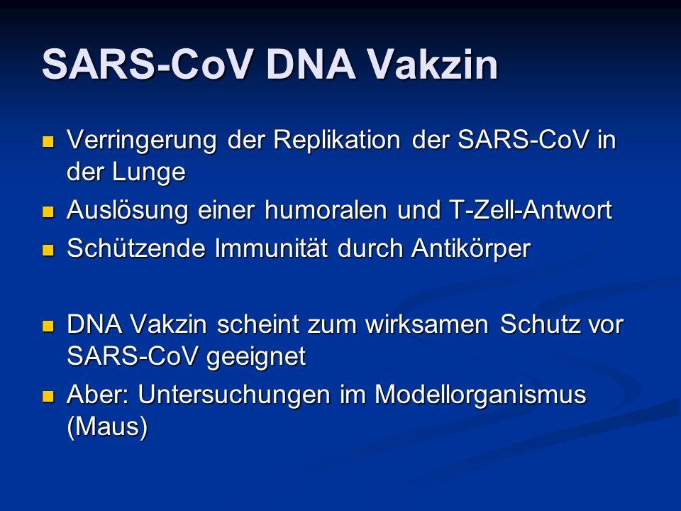 SARS-CoV DNA Vakzin Verringerung der Replikation der SARS-CoV in der Lunge. Auslösung einer humoralen und T-Zell-Antwort.
