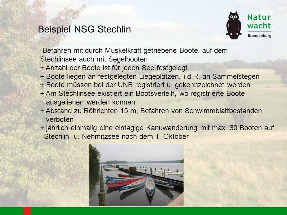 Beispiel NSG Stechlin - Befahren mit durch Muskelkraft getriebene Boote, auf dem. Stechlinsee auch mit Segelbooten.