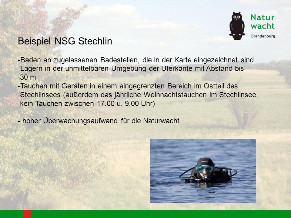 Beispiel NSG Stechlin Baden an zugelassenen Badestellen, die in der Karte eingezeichnet sind.