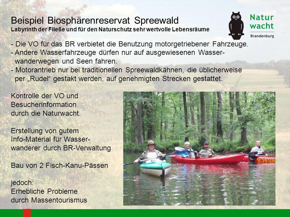 Beispiel Biosphärenreservat Spreewald