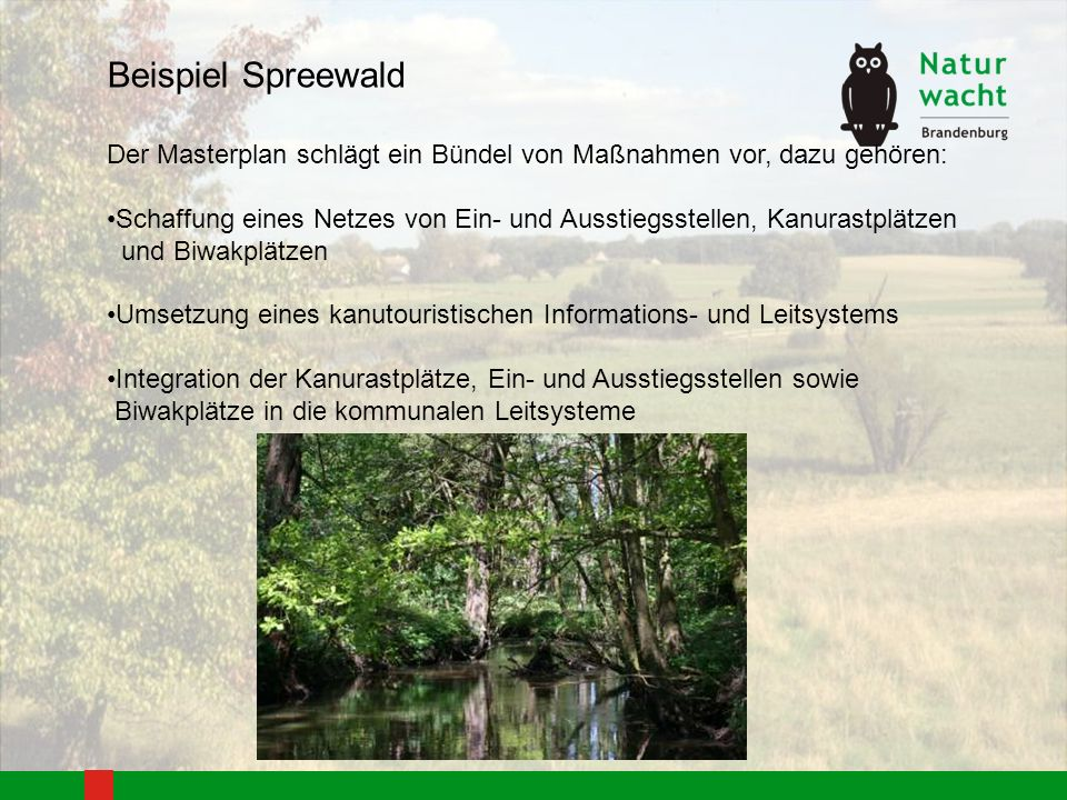 Beispiel Spreewald Der Masterplan schlägt ein Bündel von Maßnahmen vor, dazu gehören: