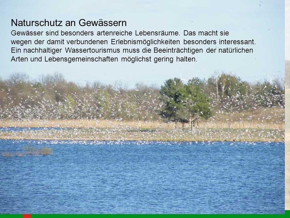 Naturschutz an Gewässern