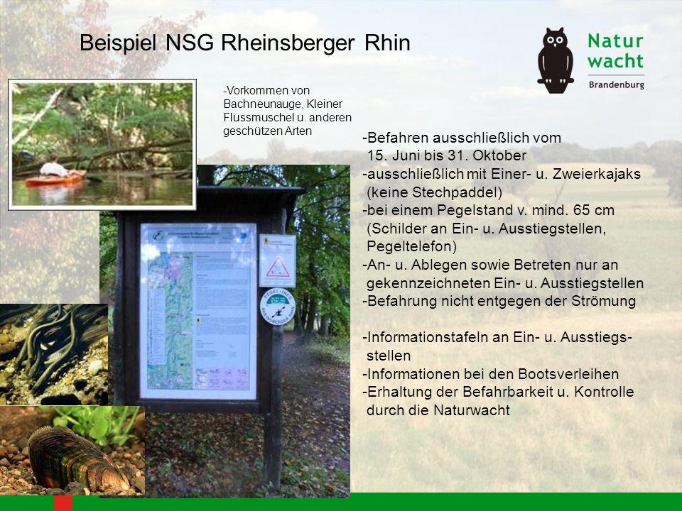 Beispiel NSG Rheinsberger Rhin