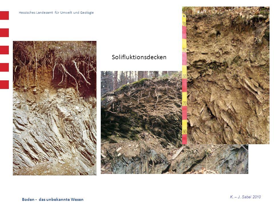 Solifluktionsdecken Boden - das unbekannte Wesen