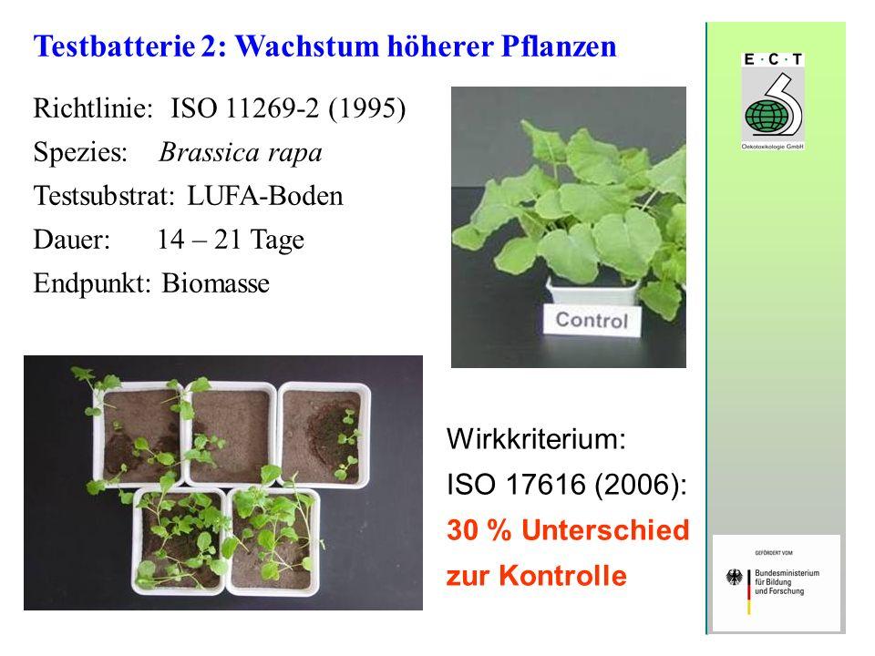 Testbatterie 2: Wachstum höherer Pflanzen