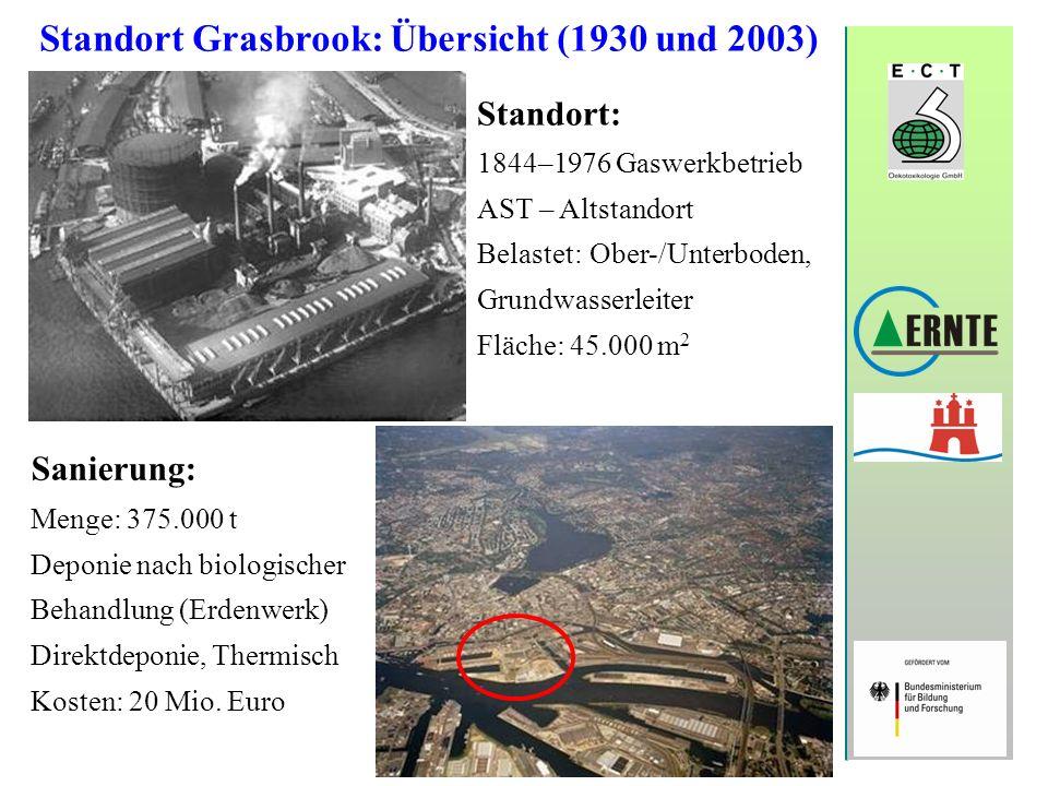 Standort Grasbrook: Übersicht (1930 und 2003)