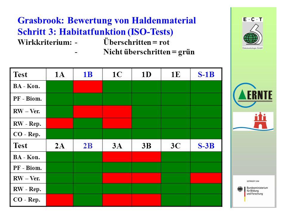 Grasbrook: Bewertung von Haldenmaterial