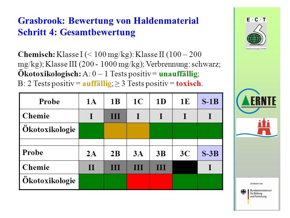 Grasbrook: Bewertung von Haldenmaterial Schritt 4: Gesamtbewertung