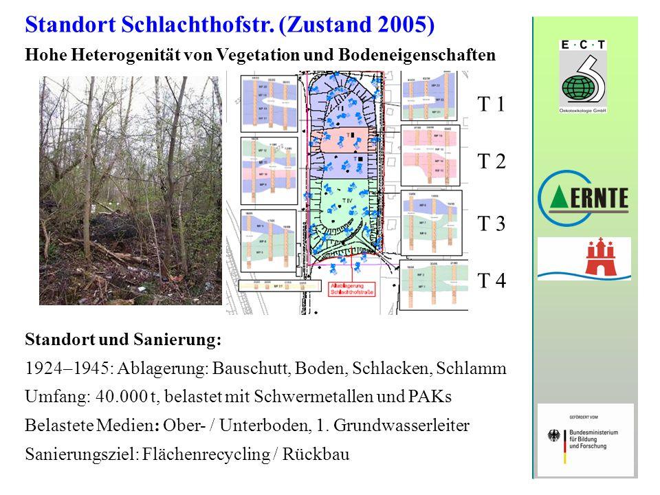 Standort Schlachthofstr. (Zustand 2005)