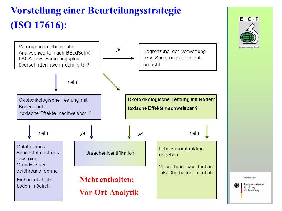 Vorstellung einer Beurteilungsstrategie (ISO 17616):