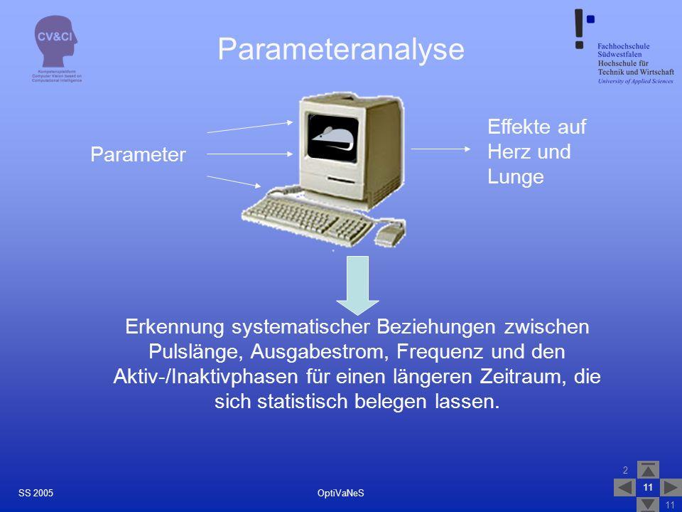 Parameteranalyse Effekte auf Herz und Lunge Parameter