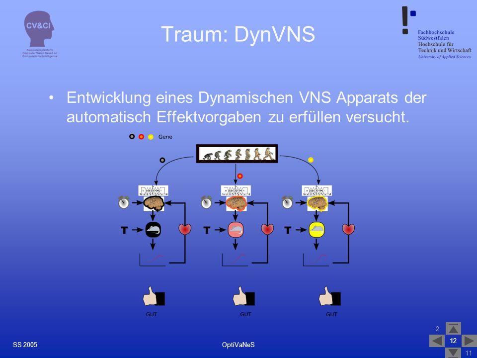 Traum: DynVNS Entwicklung eines Dynamischen VNS Apparats der automatisch Effektvorgaben zu erfüllen versucht.