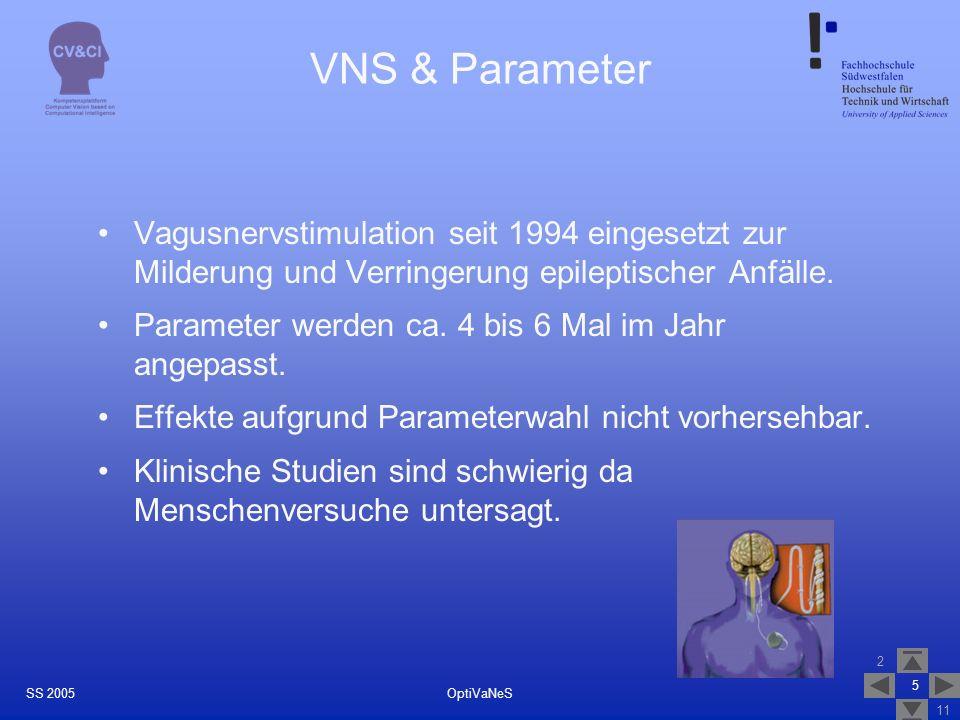 VNS & Parameter Vagusnervstimulation seit 1994 eingesetzt zur Milderung und Verringerung epileptischer Anfälle.