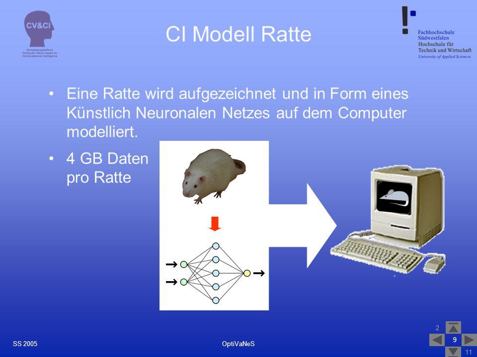 CI Modell Ratte Eine Ratte wird aufgezeichnet und in Form eines Künstlich Neuronalen Netzes auf dem Computer modelliert.