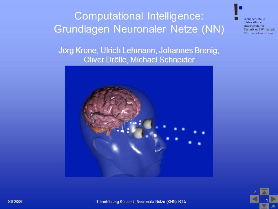Computational Intelligence: Grundlagen Neuronaler Netze (NN)