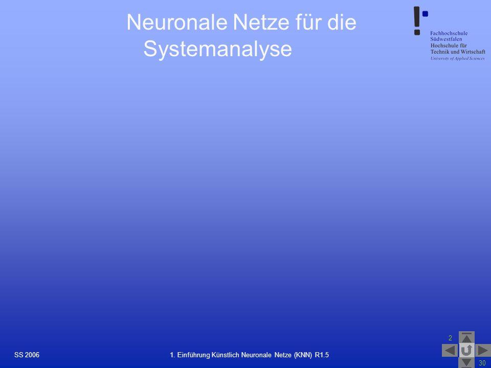 Neuronale Netze für die Systemanalyse