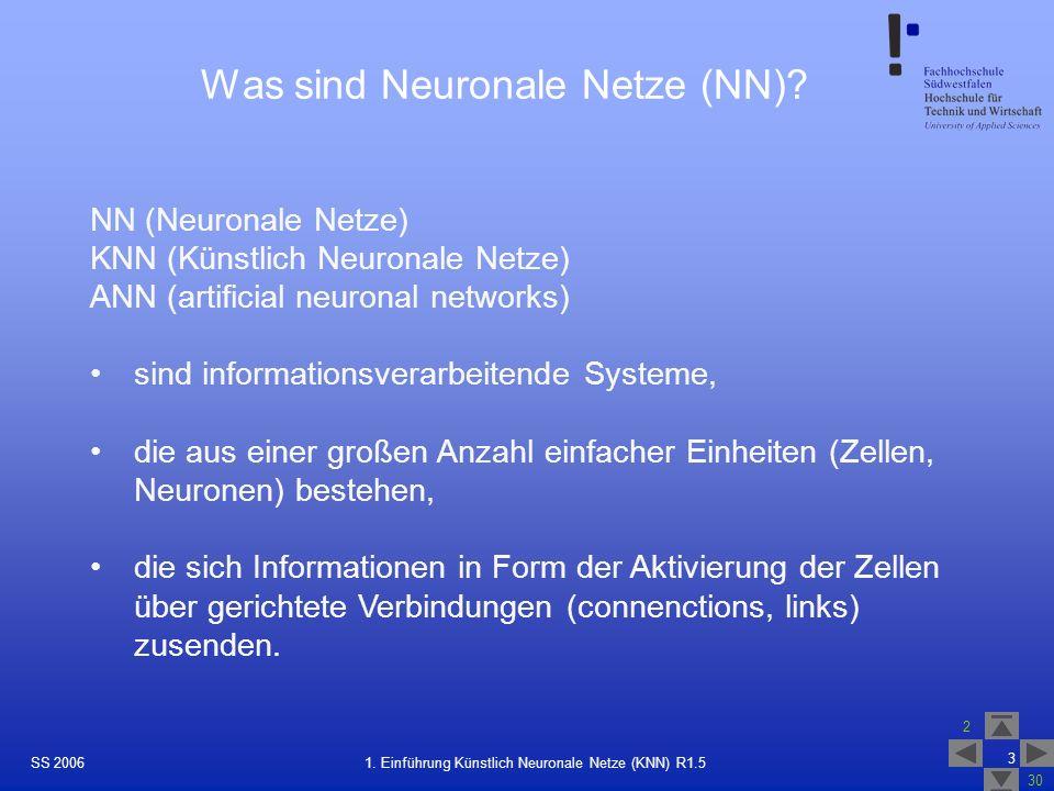 Was sind Neuronale Netze (NN)