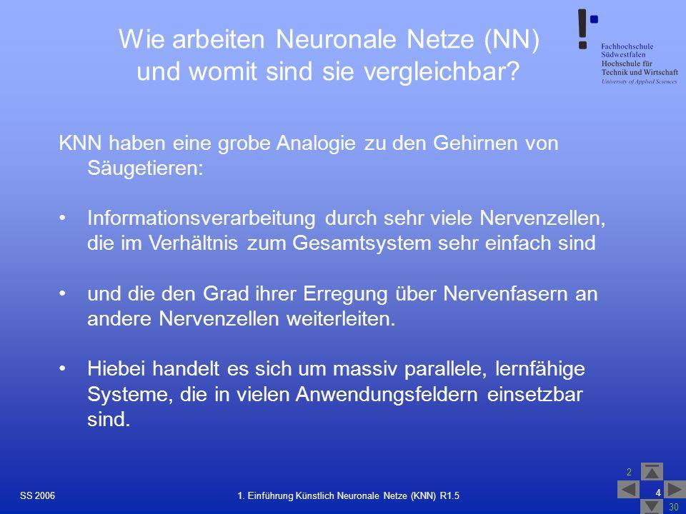 Wie arbeiten Neuronale Netze (NN) und womit sind sie vergleichbar