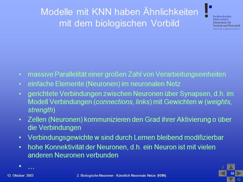 Modelle mit KNN haben Ähnlichkeiten mit dem biologischen Vorbild