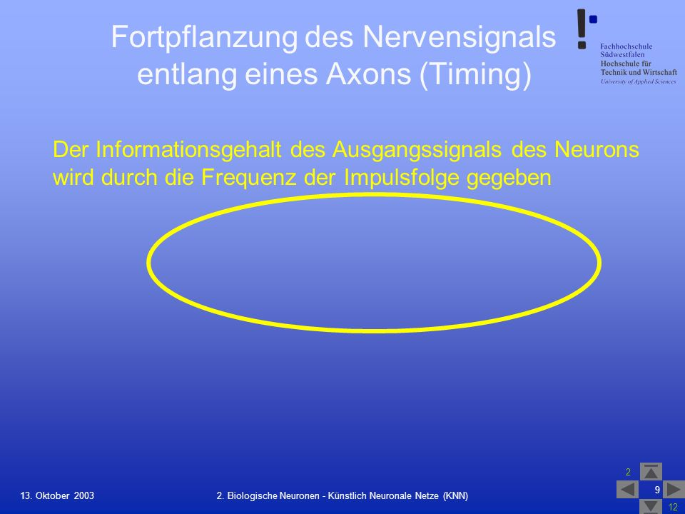 Fortpflanzung des Nervensignals entlang eines Axons (Timing)