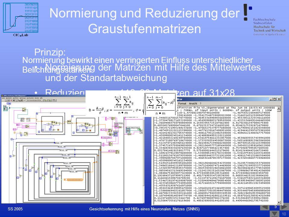 Normierung und Reduzierung der Graustufenmatrizen