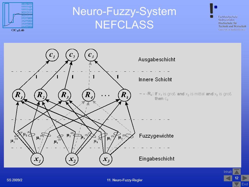 Neuro-Fuzzy-System NEFCLASS