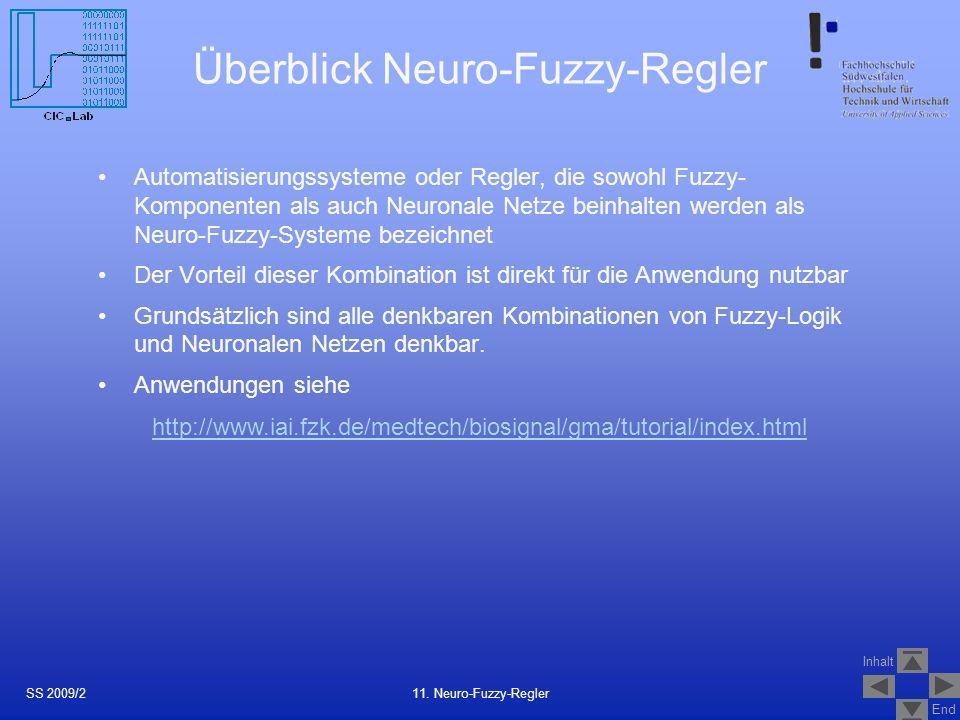Überblick Neuro-Fuzzy-Regler