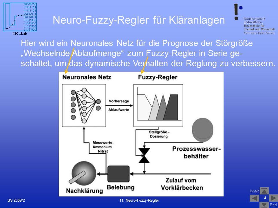 Neuro-Fuzzy-Regler für Kläranlagen
