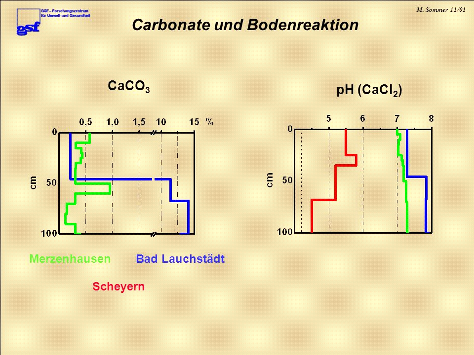 Carbonate und Bodenreaktion