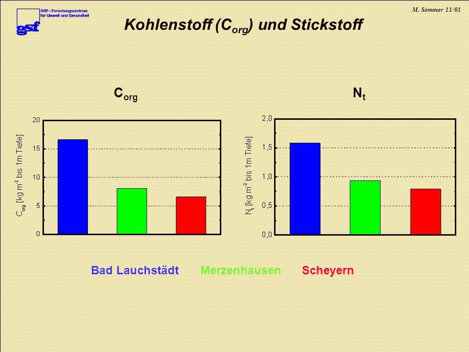 Kohlenstoff (Corg) und Stickstoff