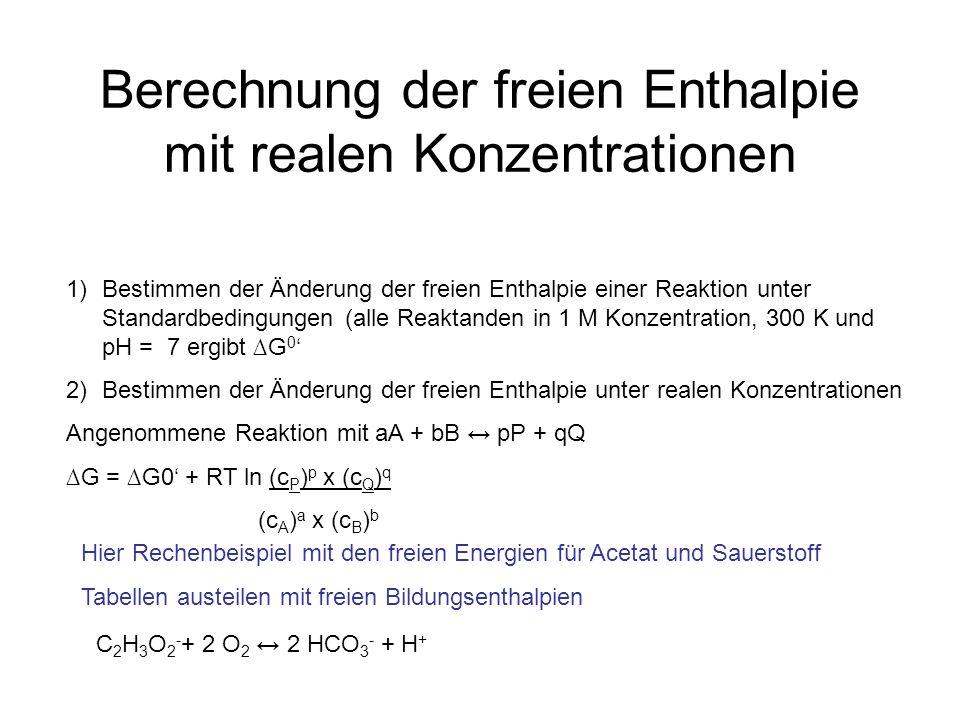 Berechnung der freien Enthalpie mit realen Konzentrationen